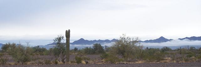 Quartzsite RV Camping View
