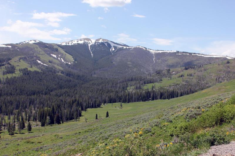 Yellowstone Tower Fall Campground View